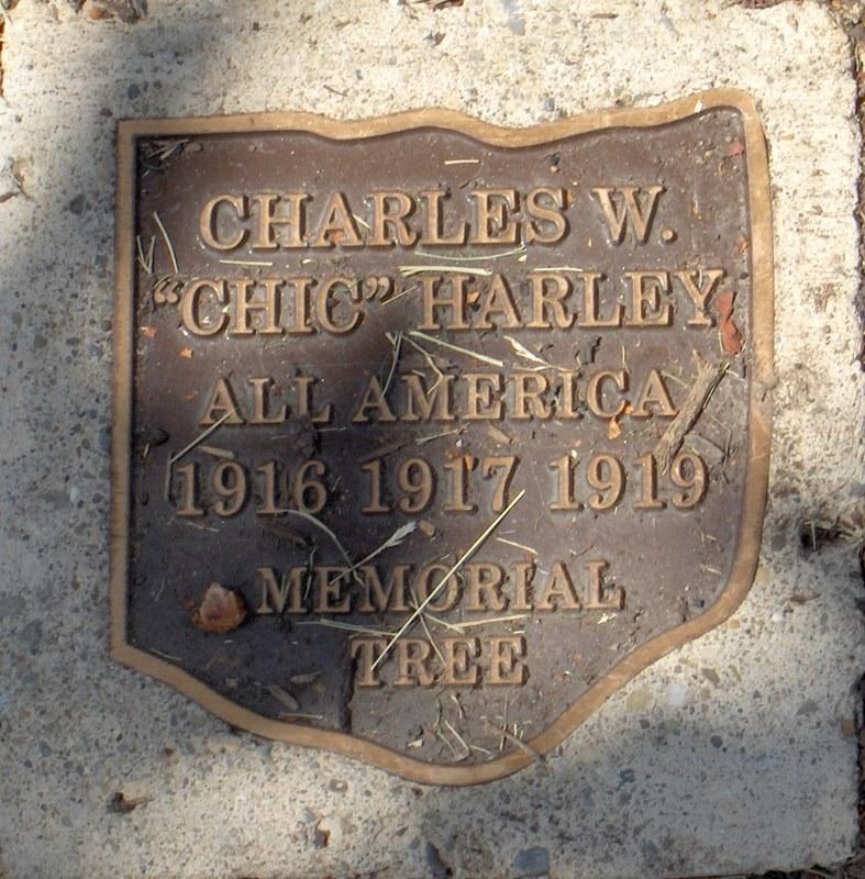 Chic Harley's name plate in Buckeye Grove